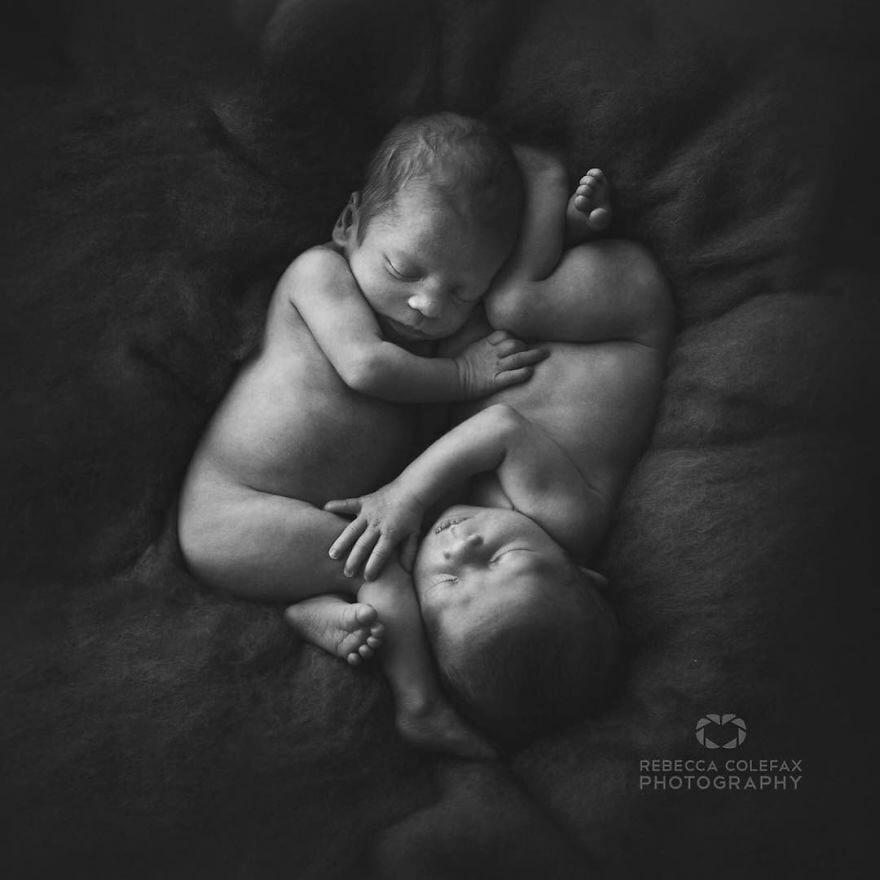 mustget-babies-10