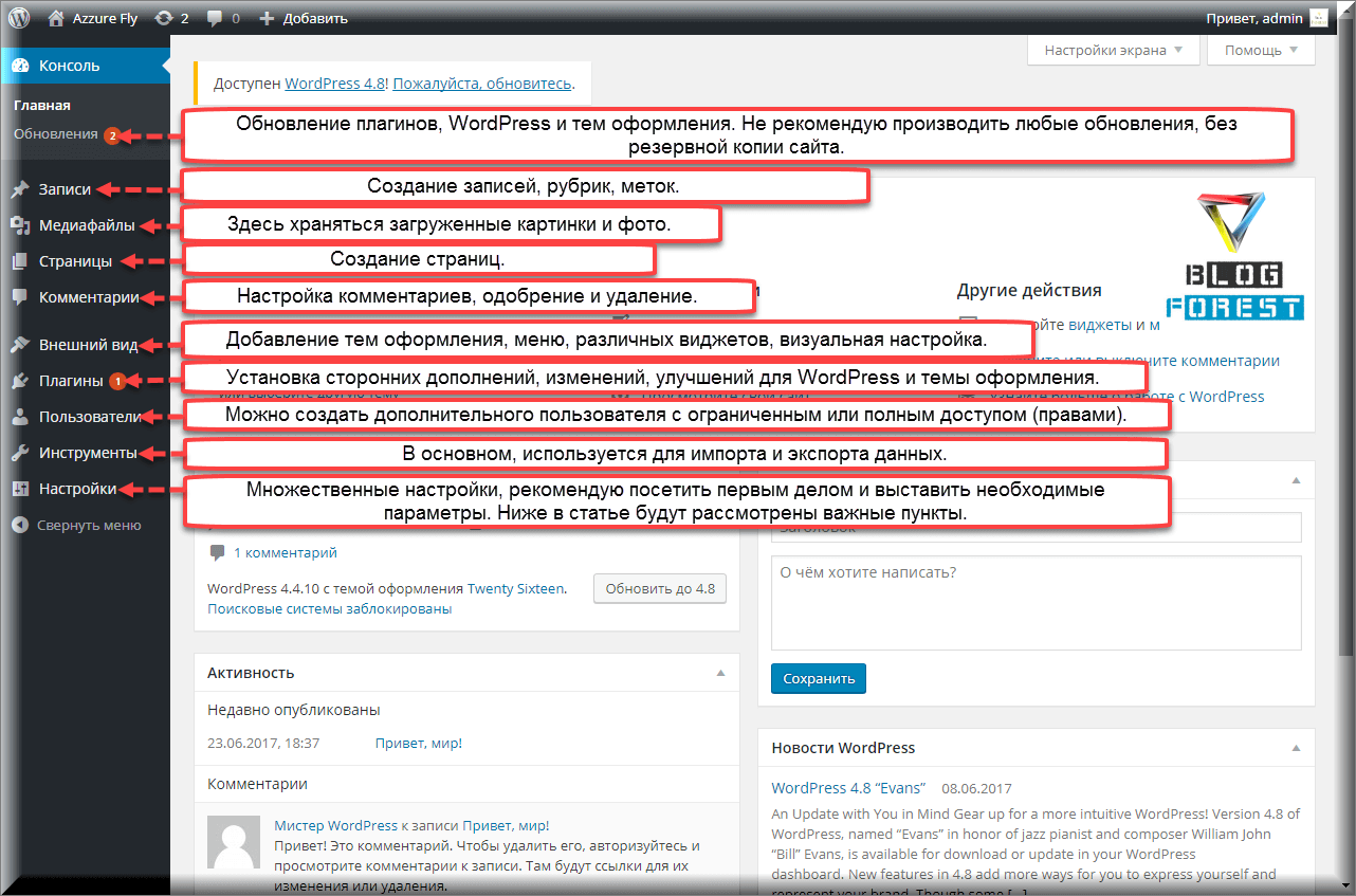 Как работать в админке WordPress?